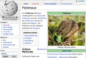 Screenshot Wikipedia